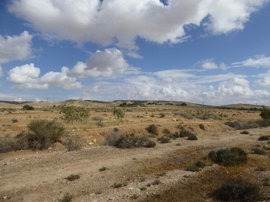 woestijn rond ons verblijf