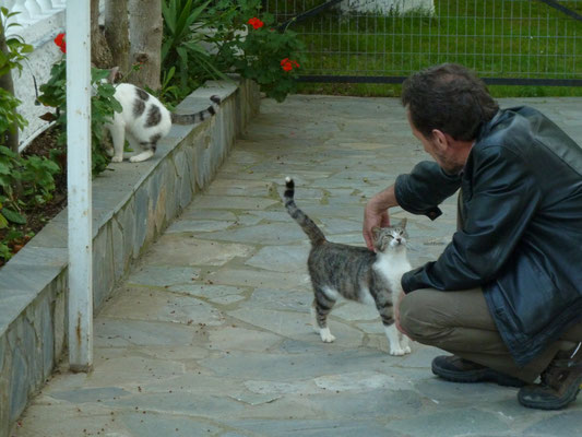 Ronald met de huiskatten