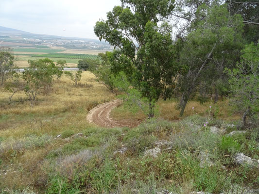 oostzijde Mount Gilboa