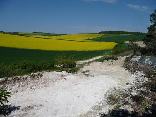kalkgroeve nabij Sens
