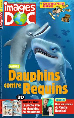 illustration 3d de couverture pour bayard presse requin dauphin