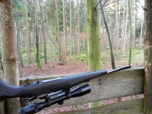 Sauber eingeschossene Waffe und absolviertes Training - nun kann das Wild kommen (© Torsten Pflittner)