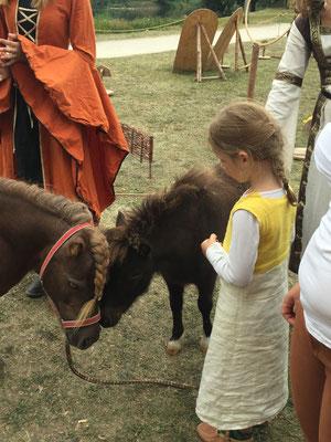 Pferde und Mädchen...