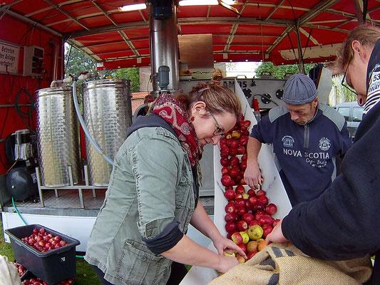 Impression Apfelmosten