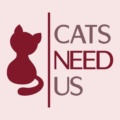 Tierschutzorganisation für Katzen im Not