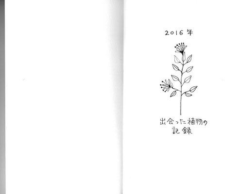 2016年に出会った植物たちをテーマに。