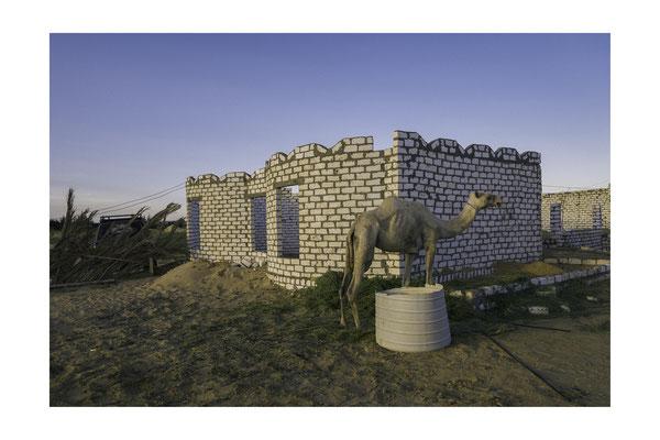 Tirage avec marge blanche (Papier 30x24 cm - Photo 18x27 cm) - Egypte (oasis de Bahariya)