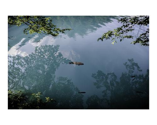 // ADOPTEE PAR SAMUEL // Tirage avec marge blanche (Papier 30x24 cm - Photographie 18x27 cm) - Les Balkans : Parc National des Lacs de Plitvic en Croatie