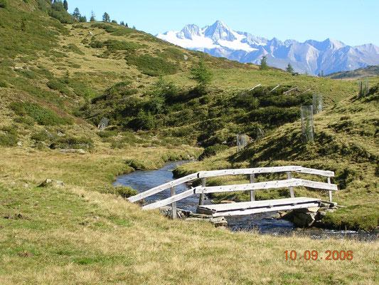 Zöschgenhof Haus Ganzer Pension Urlaub Osttirol Sommer Ferienwohnung Apartment Zimmer Ochsenalm