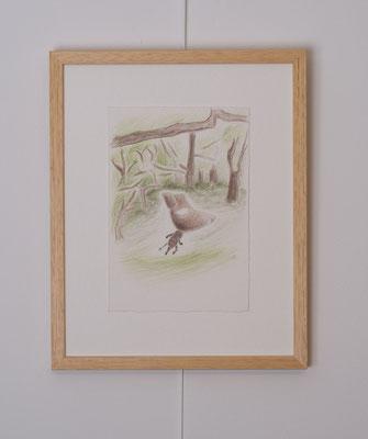 """Au sein de la série, un Sanglier au dessin épuré figure, seul, sur un fond de végétation dans des transparences de verts évoquant la forêt.    """"Sanglier"""", dessin, 10 x 15 cm, crayons de couleur sur BFK Rives, photo © Toma Bach"""