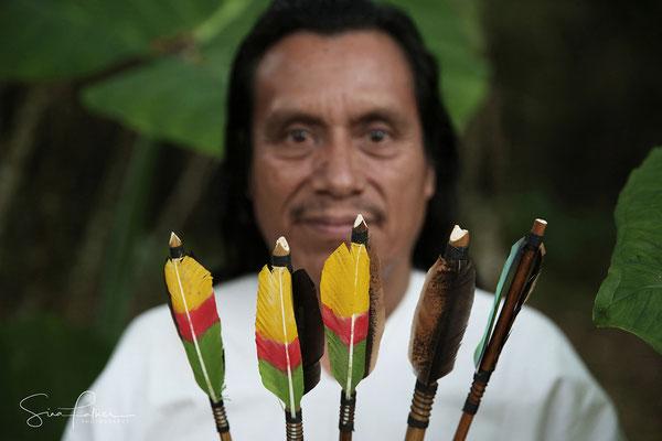 Mayan arrows