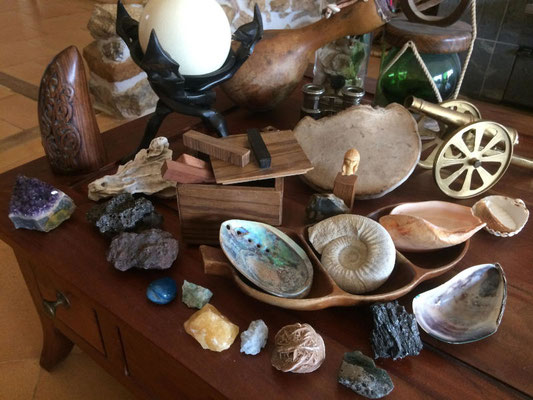 Le cabinet des curiosités avec Terra Pitchoun