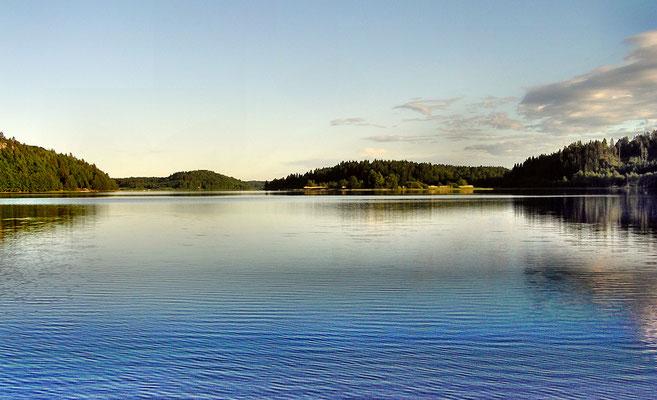 Lachs  -  Südnorwegen