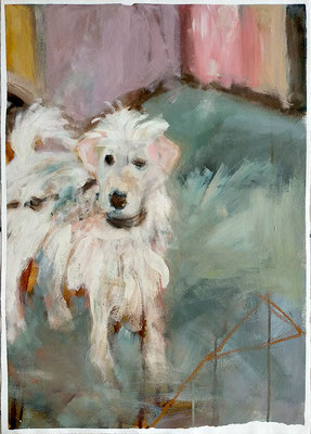 Puppy 2015,  56x39cm, Mischtechnik auf Büttenpapier