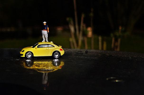 hoch auf dem gelben Wagen