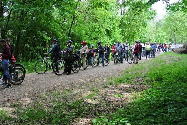Insgesamt 59 Radler und Radlerinnen machten sich, unter der Leitung von Franz Schruf, dem Organisator der Feierabendradtouren, auf den Weg.