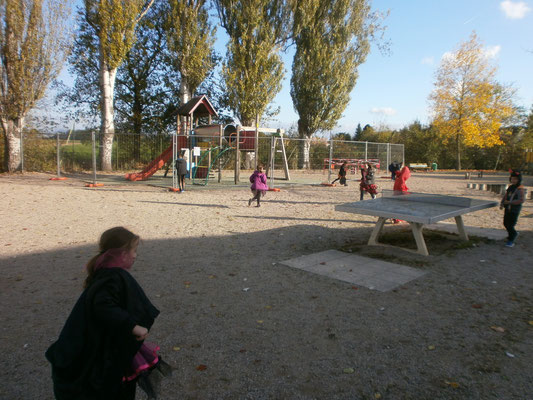 Chasse aux bonbons cachés dans le parc