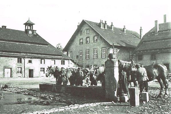 Pfedetränke in der Domäne um 1876