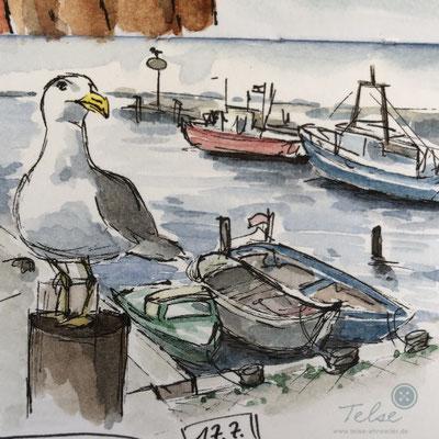 """Blick ins Skizzenbuch """"Möwe"""", Fineliner + Watercolor"""