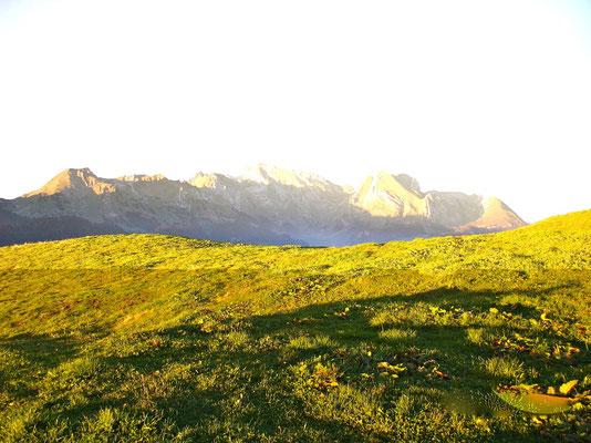 Säntis- Blick am Morgen, vom Wildmannli aus gesehen
