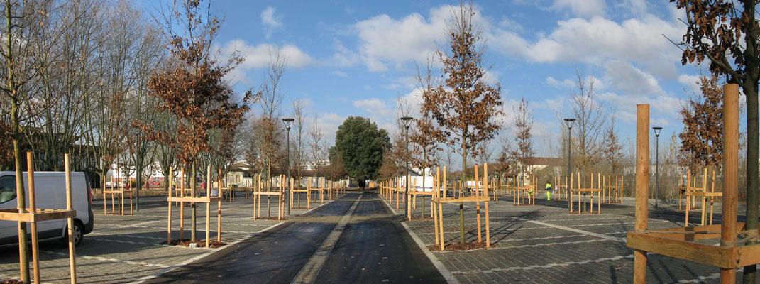 Phase de plantation du parking