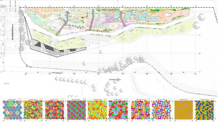 plan de plantation et carrés de plantation