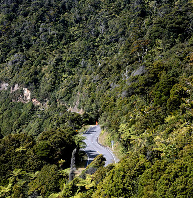 Buller Gorge ( West Coast)