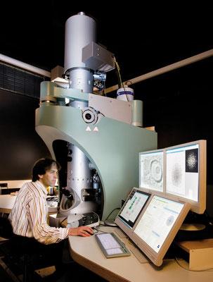lsi bonn / elektronenrastermikroskop