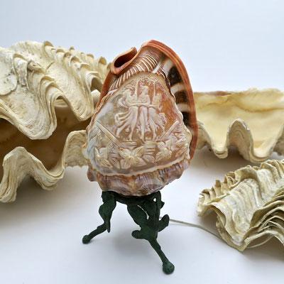 muschel shell Sommer summer nature tridacna lamp tischlampe riesenmuschel  mördermuschel badezimmer bathroom grazien dreigrazien