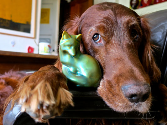 trendsetter irish setter resetter zsolnay fuchs fox doglover lazy lässig cool sophisticated workingdog midcentury interior sessel weekend