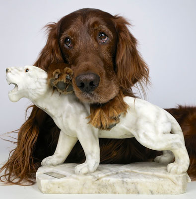 irishsetter hunting dog jagd jagdtrophäe trophy marmor kunst artwork sculpture irishred trendsetter