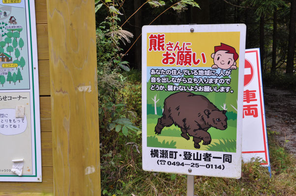 去年熊が出たらしいです(-_-;)