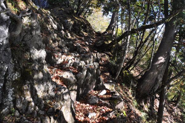 少し岩稜もあります