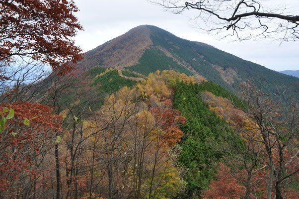 武甲山と紅葉