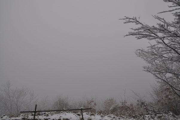 あれ、吾妻山山頂。真っ白です