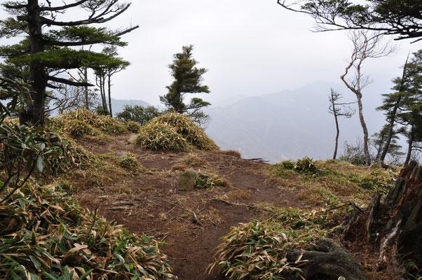 山頂先の展望台。結構広いので大勢でワイワイできます