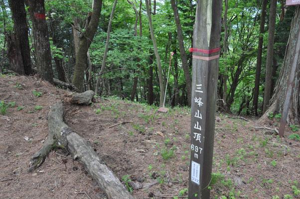 鳴神山までいくつかのピークあります