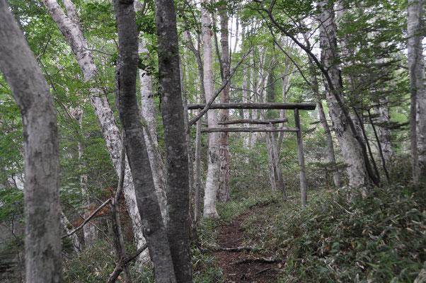 途中の日留賀岳神社の鳥居。