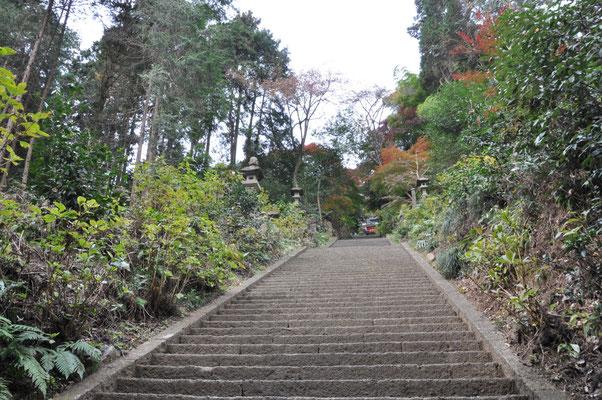 この長い階段も良いです