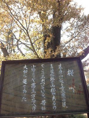 桜峠、重要なポイントだったようです