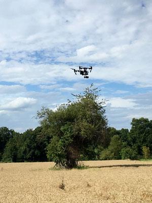 Quadrocopter fliegen rum ...