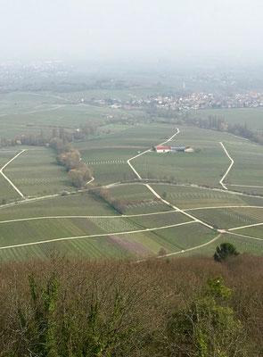 Fernblick Richtung Landau und Rhein: Wo steht das WoMo?