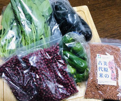 堺市美原区古代米「赤米」