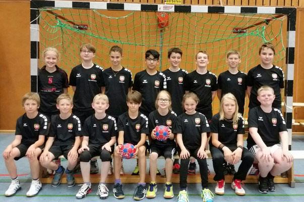 D-Jugend - Kreisklasse Saison 2016/17