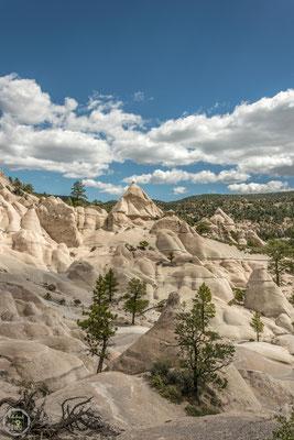 Pine Park Utah
