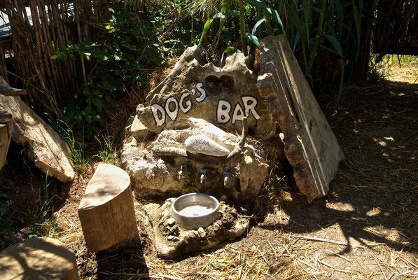 """Auch an die Hunde wurde gedacht """" Dogs Bar"""""""