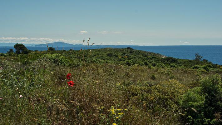 Blick von der Ostküste Rt Kamenjak, im Hintergrund sieht man die Insel Cres und Losinj