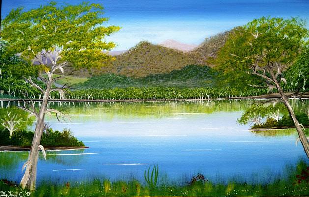 Len Hends place 2 ( Acrylics 60 cm x 40 cm )
