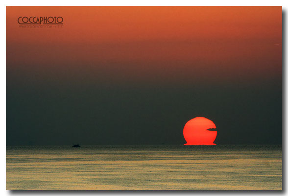 Canon eos 350D - f/13-1/200sec-iso400-300mm