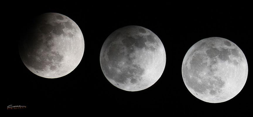 Fasi eclissi di Luna 25-04-2013